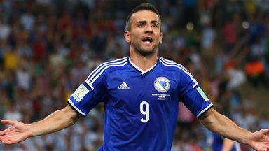 Vedad Ibisevic: Attracting interest from England and Turkey