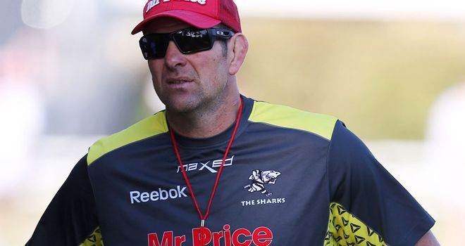 John Plumtree: To leave his role with Ireland