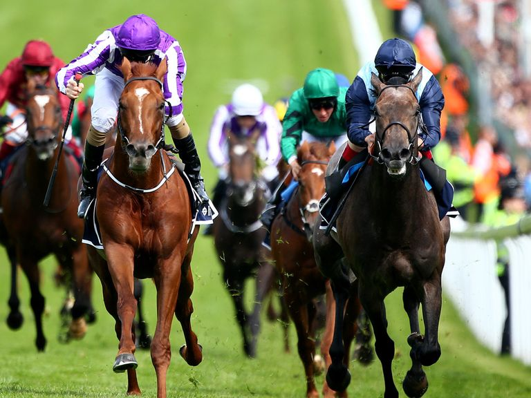 Kingston Hill delighted his trainer at Epsom