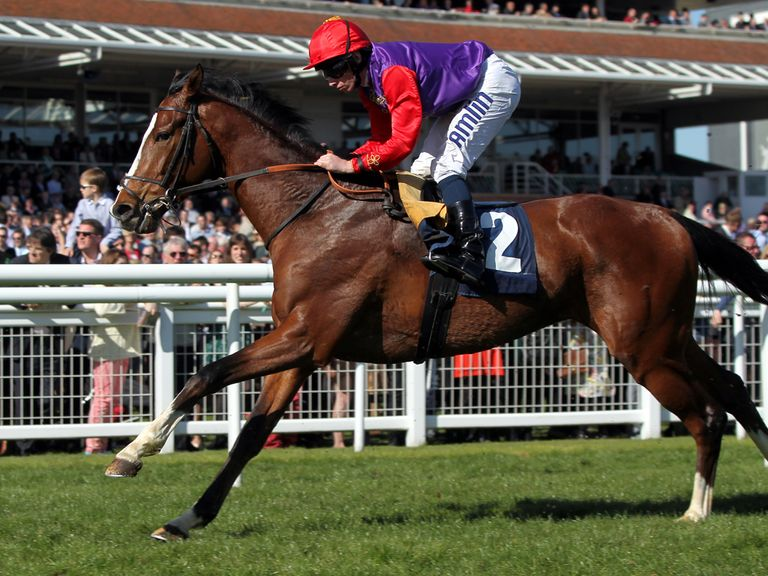 Bold Sniper: Continues to be well supported at Royal Ascot