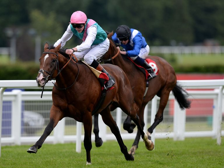 Kings Fete: Set to emerge as a St Leger candidate on Saturday.