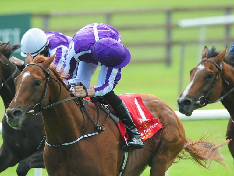 Australia: Being prepared for York and Leopardstown