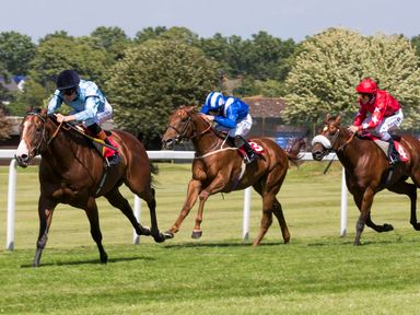 Beacon wins the Dragon Stakes from Mukhmal and Snap Shots