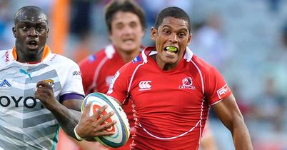 Botha signs for Chiefs
