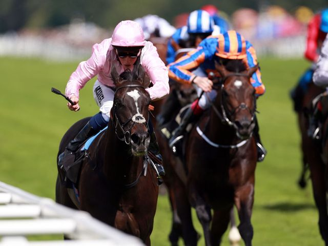 The Fugue: Trainer under no illusions