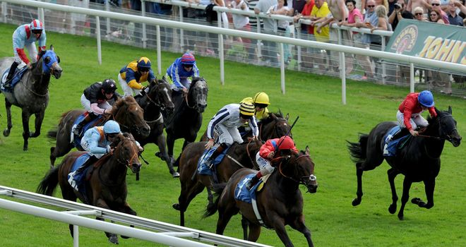 G Force: Set to take his chance in the Nunthorpe