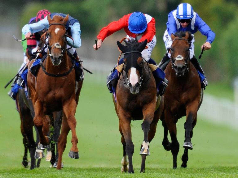 Royal Seal (centre): Can return to winning ways