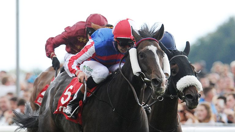 Mutual Regard could run at Kempton Park