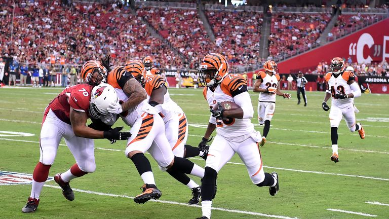 The Cincinnati Bengals hope to return to the playoffs again this year
