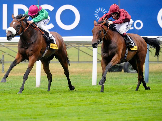 Euro Charline won the Beverly D