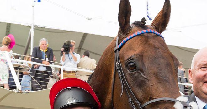 Atzeni: New number one jockey for Qatar Racing