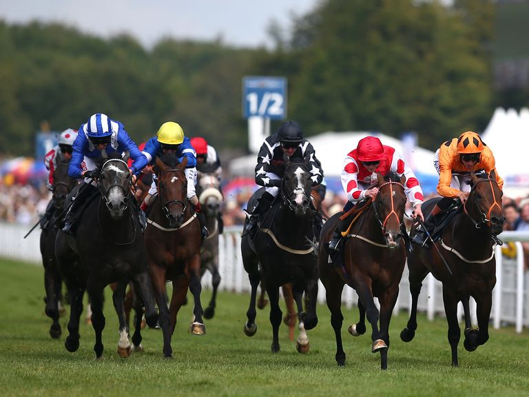 Markaz: Can go well in the DBS Premier Yearling Stakes
