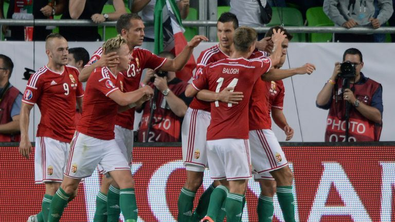 Hungary: Players celebrate after Tamas Priskin made it 1-0