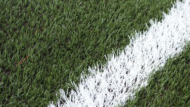 FIFA president Sepp Blatter says artificial turf is the