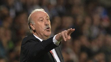 Del Bosque: Plans to leave role after finals in France