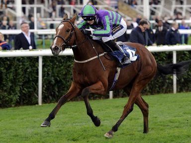 Withernsea wins the Socialites Zero Stoptober Apprentice  Jockeys Race