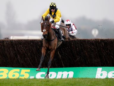 Wilton Milan, ridden by Jack Sherwood, jumps the last to go on and win the Bet365 Conditional Jockeys' Handicap Chase