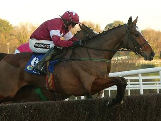 Don Poli: Set to run in the RSA Chase, along with Very Wood.