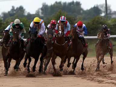 They race at Southwell on the Fibresand on Thursday