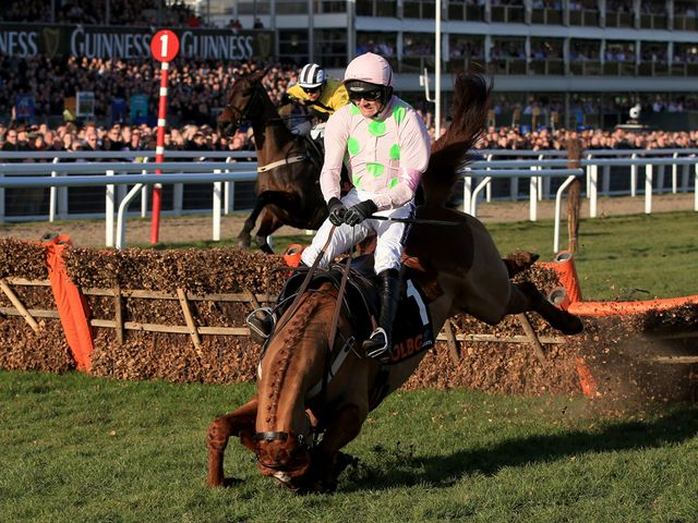The dramatic moment when Annie Power fell at the last with the race at her mercy