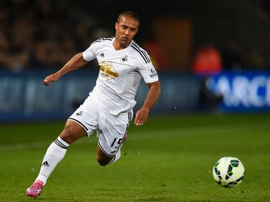 Wayne Routledge: Ankle operation