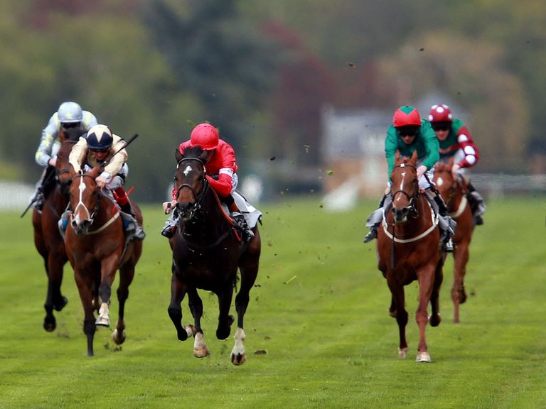 Horse Racing Betting Odds | Sky Bet