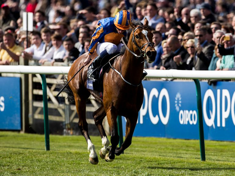 Gleneagles: Set to run at Leopardstown... if connections are deemed suitable.