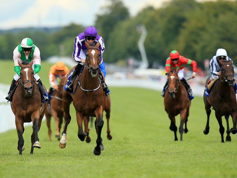 Highland Reel: One of the runners expected to travel