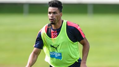 Newcastle striker Emmanuel Riviere appears to be sidelined for the immediate future after hurting a knee during training