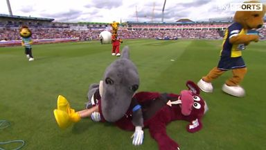 Stumpy of Somerset is floored and seized on by Sid the Shark of Sussex