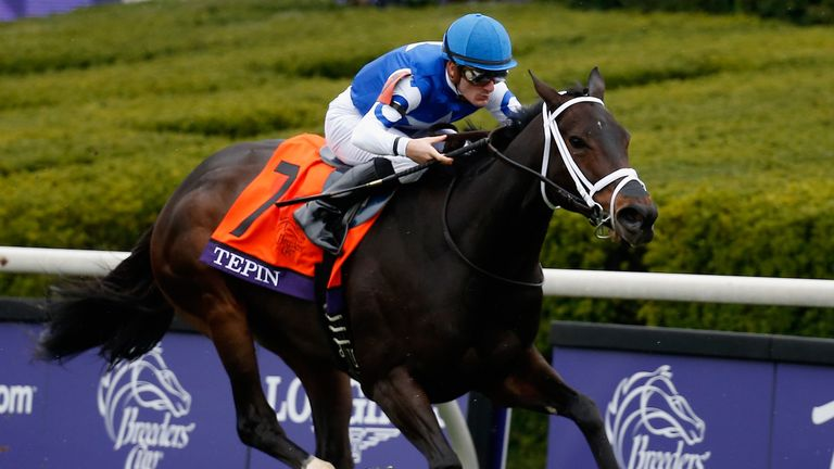 Tepin: Being aimed at the Queen Anne Stakes