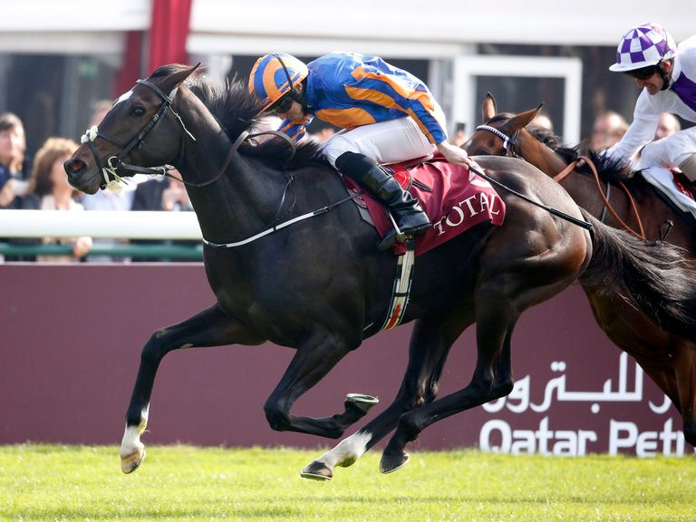 Ballydoyle: All set for the 1000 Guineas