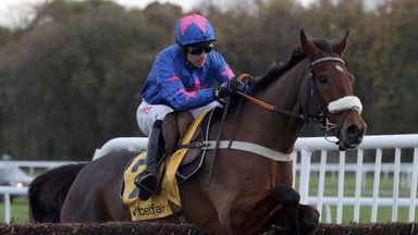 Cue Card could have a racecourse gallop before Cheltenham