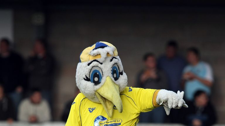 Gilbert the Gull is not a happy bird after being banned by Forest Green Rovers