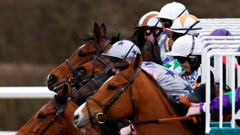 Lingfield will race on the all-weather on Saturday