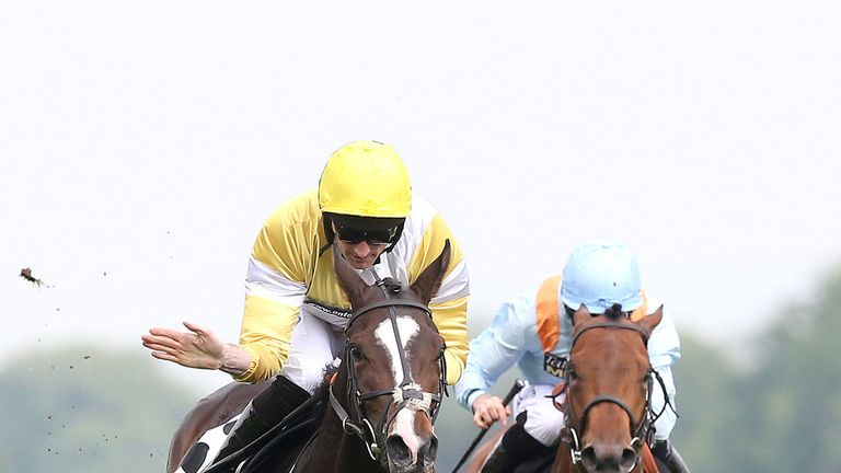 Quiet Reflection (left) misses Royal Ascot