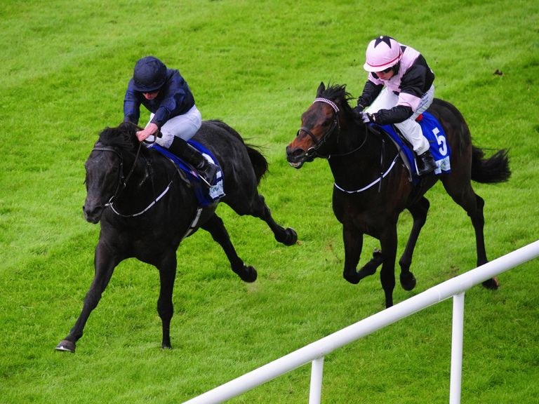 Caravaggio (left) boasts strong form heading into the meeting