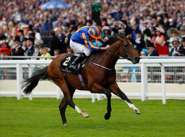 Churchill: Group Two winner at the Curragh on Sunday