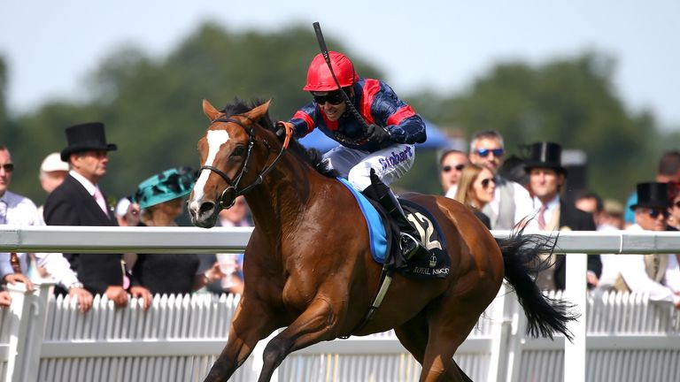 Trip To Paris wins the Gold Cup at Ascot in 2015