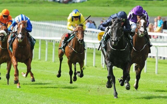 http://e0.365dm.com/16/08/640/caravaggio-horse-racing-curragh_3759772.jpg?20160807163105