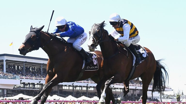 Melbourne Cup victor: One punter's $10 bet reaps a $240000 windfall