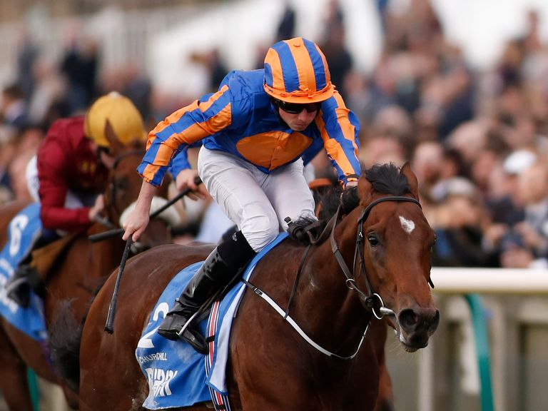 Churchill: Crowned top juvenile in 2016