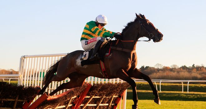 Unowhatimeanharry has yet to taste defeat at Cheltenham