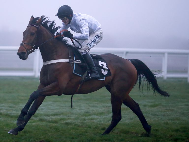 Brain Power: Could he be the one for the Champion Hurdle?