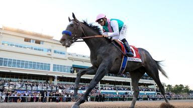 Arrogate is set for the Dubai World Cup
