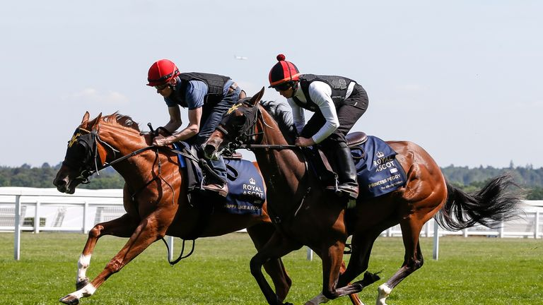 Happy Like A Fool (L) works with Princess Peggy (R) in a track gallop at Ascot