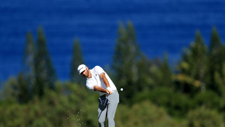 Dustin Johnson's drive finishes inch short of albatross at Kapalua