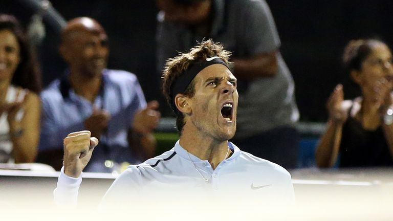 Juan Martin del Potro is looking for his third ATP Tour title since injury struck