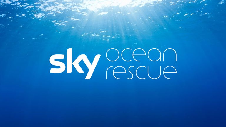 Ocean Rescue new jan 18
