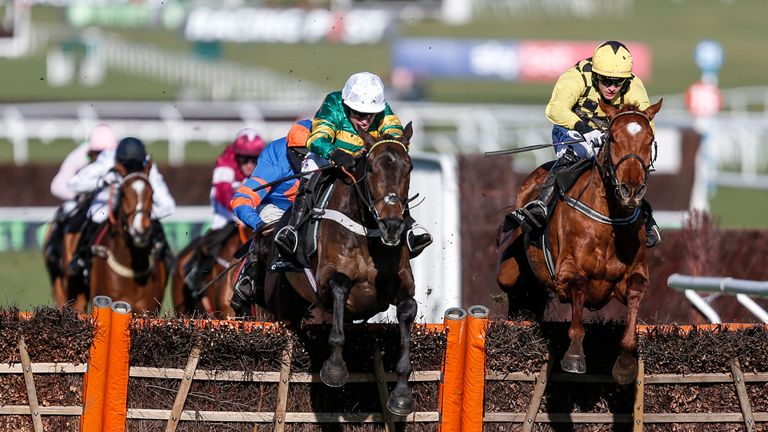 Buveur D'Air: On target for Aintree after this Cheltenham win
